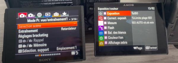 Le menu simplifié chez Sony